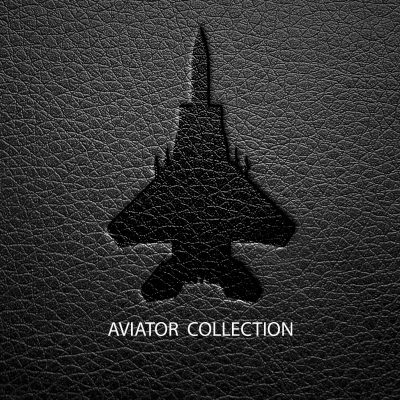 AVIATOR JACKETS Collection
